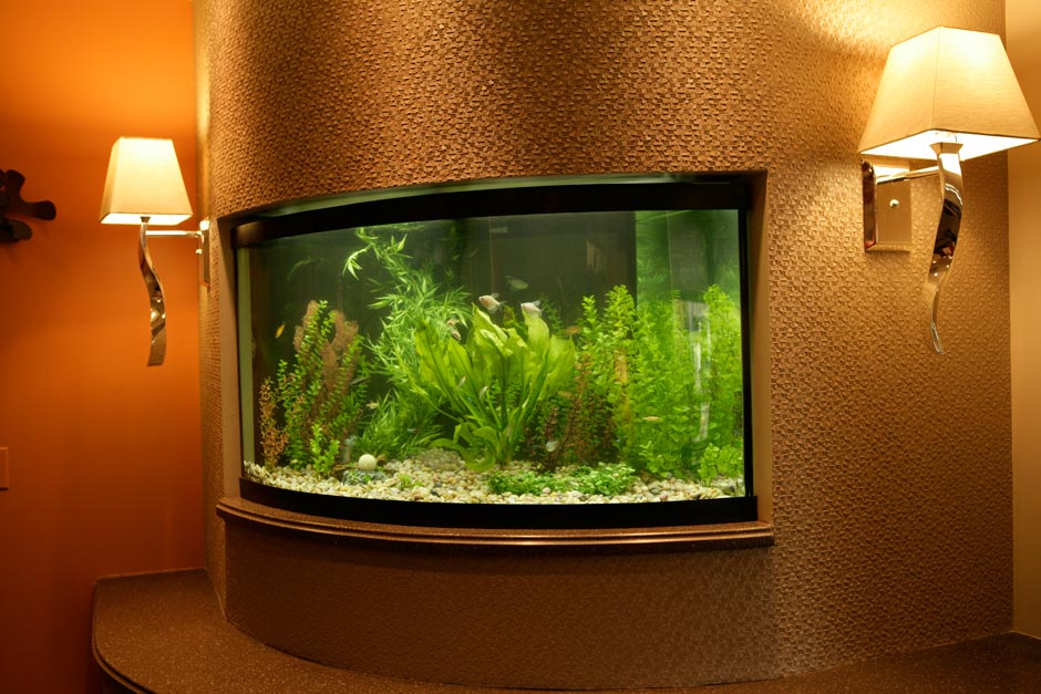 Entry Way Aquarium